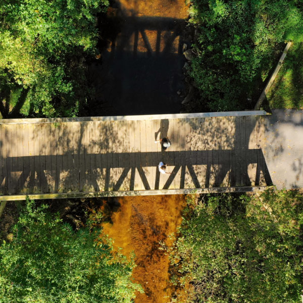 Wooden walking bridge over stream
